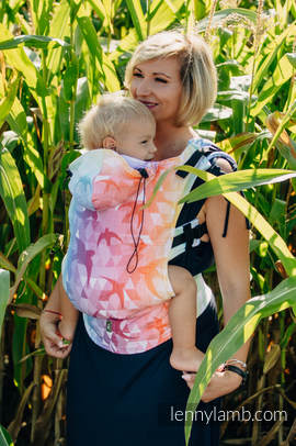 Ergonomic Carrier, Toddler Size, jacquard weave 100% cotton - wrap conversion from SWALLOWS RAINBOW LIGHT - Second Generation (grade B)